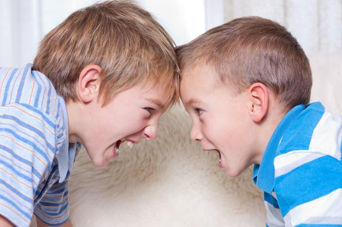 Родные братья и сестры: как родителям остановить ссоры. Видеосоветы и интервью Оксаны Алисовой телеканалу ДОН 24